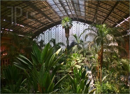 Tropical Green House