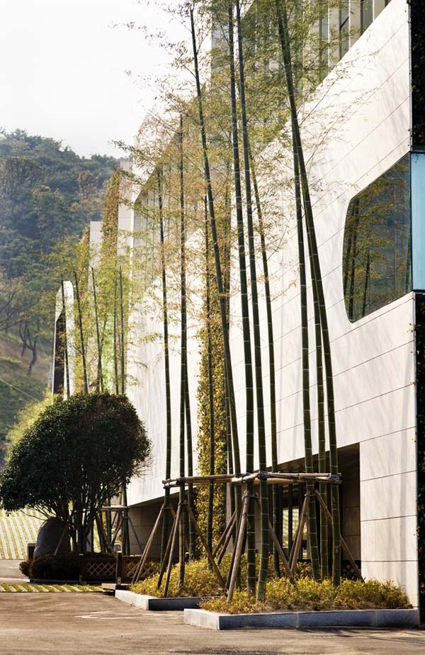 Green Weaving Club House Bamboo Tree