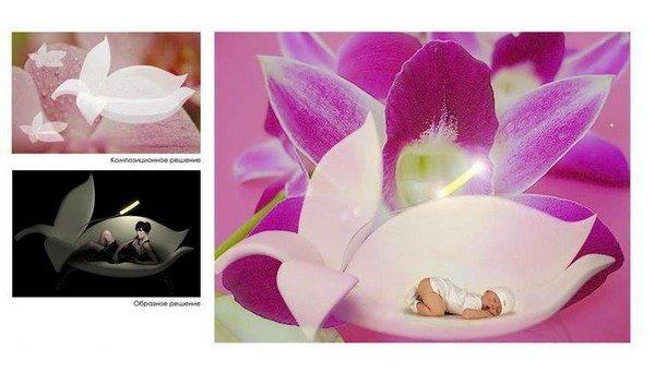 beautiful purple lily flower sofa