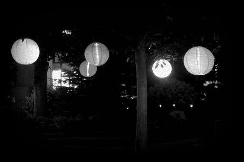 Solar Shoji Outdoor Lantern