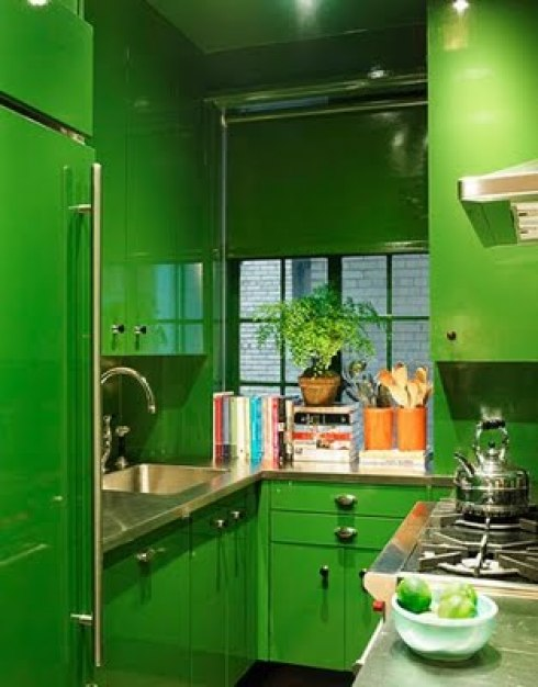 Dominent green color kitchen themes