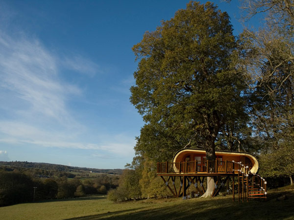 Blue Forest Eco-Perch treehouse outside view