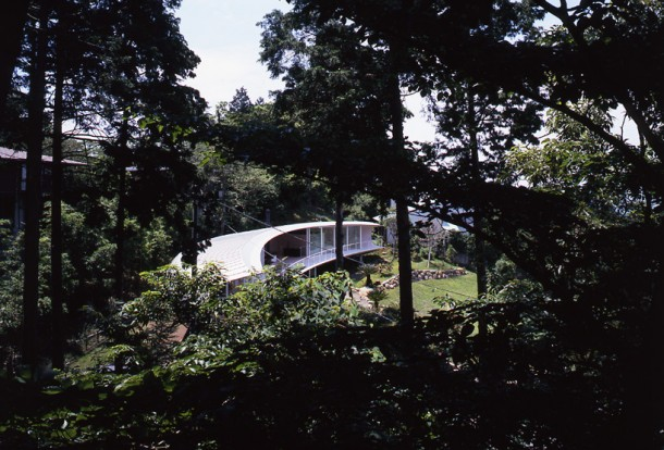view of residence through the trees
